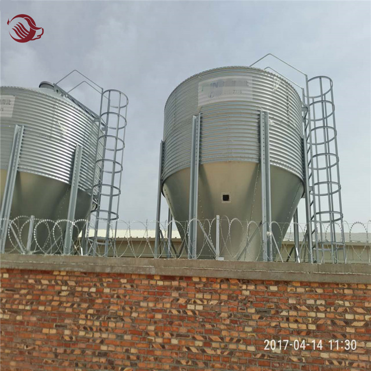 Poultry chicken feeding equipment silo for storage feed / Silo