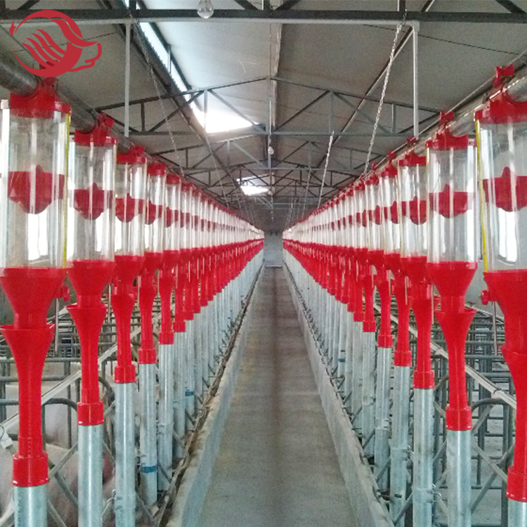 pig Disc Chain automatic Feeding System