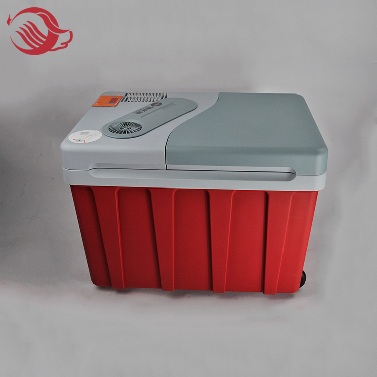 Constant Temperature Vehicle Mounted Refrigerator