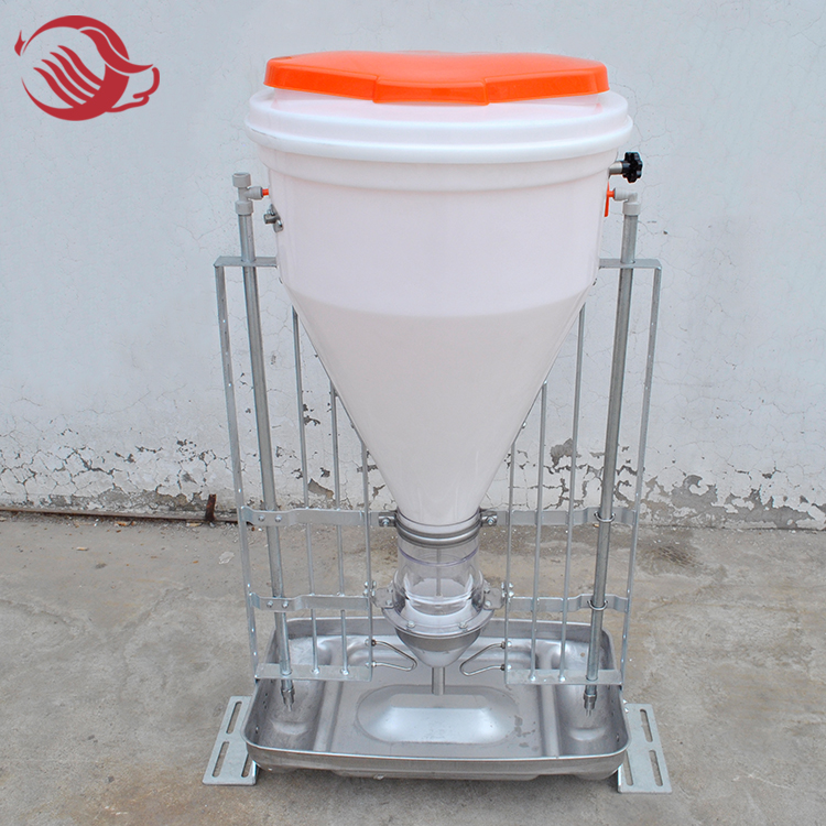 Pig Automatic Dry-Wet Feeder